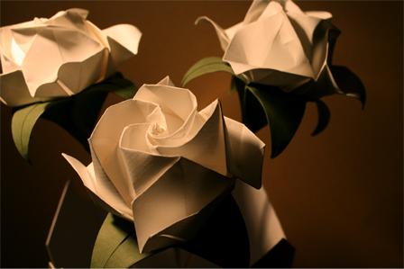 5. Flowers 5